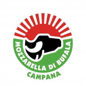 Mozzarella_Bufala